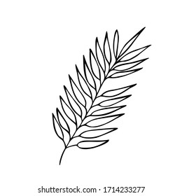 Hand drawn abstract floral sprig silhouette. Black and white outline vector illustration. Decorative branches. Spring and summer leaves icons collection. Doodle style.