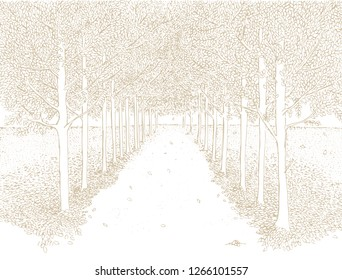 Hand Drawn Abstract Vector Landcape. Light Pale Brown Sketched Landscape on a White Background. Delicate Paste Color Drawing. Straight Park Alley with Trees Running Along Each Side.