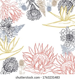 Hand drawn African flowers. Vector  background. Sketch illustration.