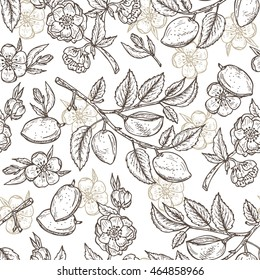 Hand drawn Almond Seamless pattern. Flowers, Branches with leaves and immature fruit. Floral background. Vector illustration.