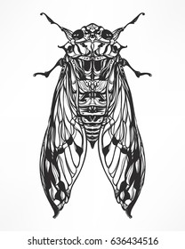 Hand drawn antique Insect beetle. Isolated on white. Vector illustration. Decorative graphic  Art Nouveau style.Engraving romantic. Element for print, design tattoo art, adult coloring page.