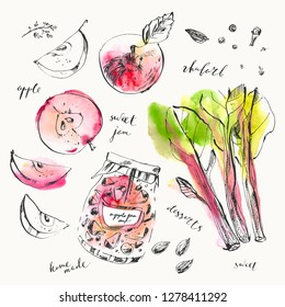 Hand drawn apple and rhibarb jam jar and spices. Clove, cardamon, thyme, peppercorn. Summer ink and watercolor stain illustration.