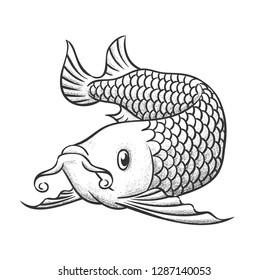 Hand drawn arowana fish. Vector Illustration.