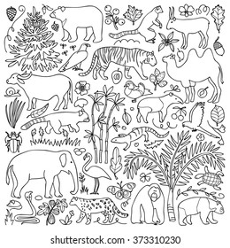 Hand drawn Asia set. Vector illustration with Asian animals and plants