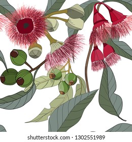 hand drawn australia gum nut leaf and red flowers seamless pattern on white background