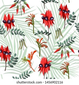 hand drawn australia native wild flower swainsona formosa or sturt desert pea and kangaroo paw seamless pattern on white background