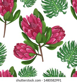hand drawn australian native flower red ice protea and tropical green leaf monstera deliciosa in seamless pattern on white background