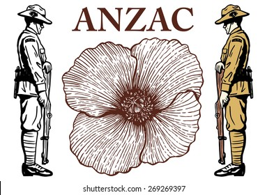 Hand drawn of Australian soldier and poppy flower, vector