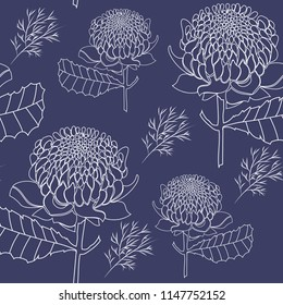 hand drawn Australian waratah native flowers in white outline seamless pattern