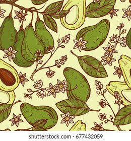 Hand drawn Avocados Vector Seamless pattern. Branches with leaves and fruit. Blossoming Avocado. Leaves, Flowers, Tropical Fruits. Floral background
