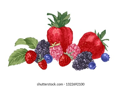 Hand drawn background with berries- strawberry, blueberry, blackberry and mint leaves