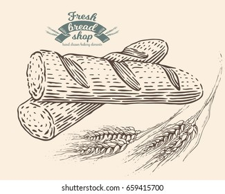 Hand drawn baguette in engraving style. Ears of wheat. Bread bakery fresh food collection. Vector vintage illustration. Black elements isolated on white background.