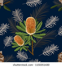 hand drawn banksia, australia native flower seamless pattern