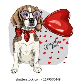 Hand drawn beagle with heart shape baloon. Vector Valentine day greeting card. Cute colorful dog wears glasses and bandana. Romantic design. Love pet portrait. Poster, banner. Spread love.