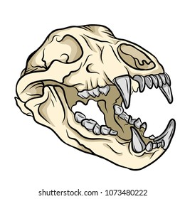 Hand drawn bear skull with coloring