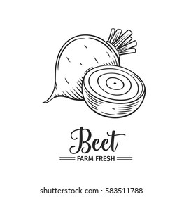 Hand drawn beet icon. Vector badge vegetable in the old ink style for brochures, banner, restaurant menu and market