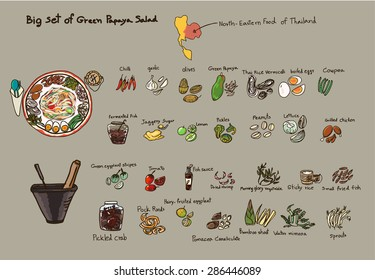 Hand drawn big set of Green Papaya Salad vector