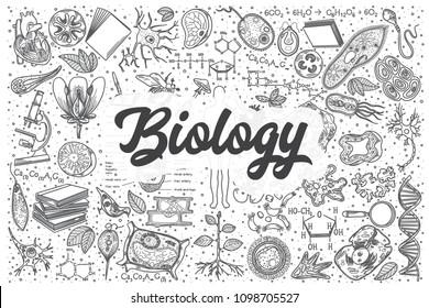 Hand drawn biology doodle set. Lettering - Biology