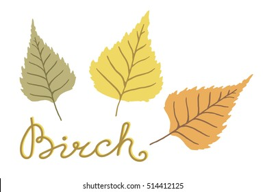 Hand drawn birch leaves isolated on white background