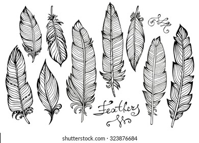 Hand drawn bird feathers closeup isolated on white background set. Boho style. Vector illustration
