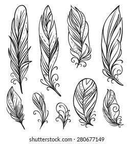 Hand drawn bird feathers. Vector set
