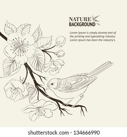 Hand drawn bird on sacura branch. Vector illustration, contains transparencies, gradients and effects.