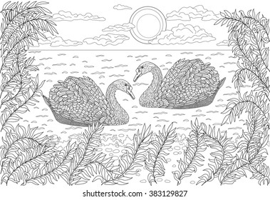Hand drawn birds - Two swans swimming in a pond. Coloring page for adult.