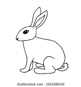 Rabbit Line Drawing Images Stock Photos Vectors Shutterstock