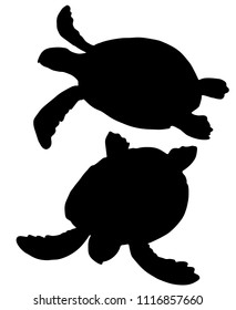 Hand drawn black silhouette sea turtle isolated on white background. Vector illustration. Sea theme.