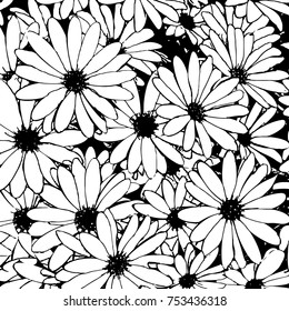 hand drawn black and white daisy flowers as a background - vector illustration