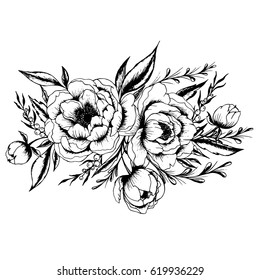 Hand drawn black and white ink illustration of a peony flowers. Vector peony flower isolated on white background. Element for design. Hand-drawn contour lines and strokes.