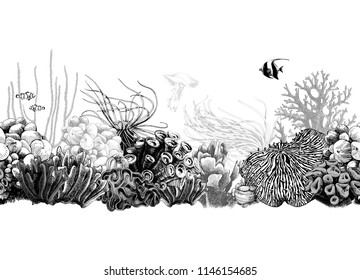 Hand drawn black and white seamless coral border. Vector illustration