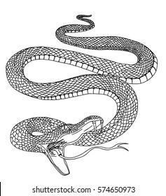 Hand drawn black and white snake tattoo