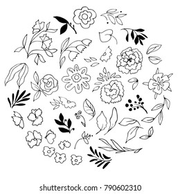 Hand drawn botanical elements. Black and white branches, flowers, leaves and berries.