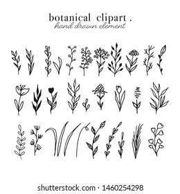 Flower Shop Clipart Black And White - Flower Shop Coloring Page , Free  Transparent Clipart - ClipartKey