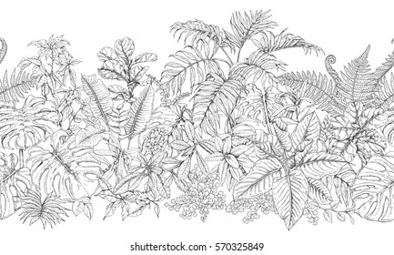 Hand drawn branches and leaves of tropical plants. Monochrome  line horizontal floral pattern. Black and white seamless texture. Vector sketch.