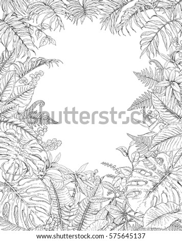 Hand Drawn Branches Leaves Tropical Plants Stock Vector Royalty