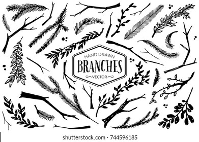 Hand drawn branches and twigs. Ink illustration.
