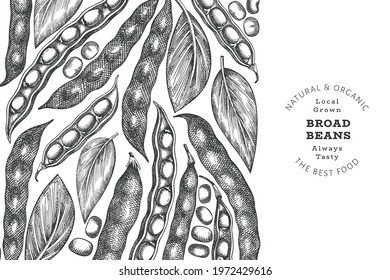 Hand drawn broad beans design template. Organic fresh food vector illustration. Retro pods illustration. Engraved botanical style cereal background.