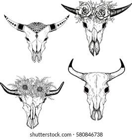 Hand drawn Buffalo Skull boho style