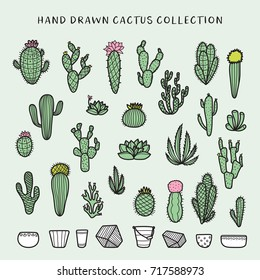 Hand drawn cactus set. Decorative floral design elements for prints, patterns, decoration needs. Vector doodle vintage illustration.