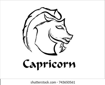 Hand Drawn Capricorn Zodiac Sign in Sketch and line art