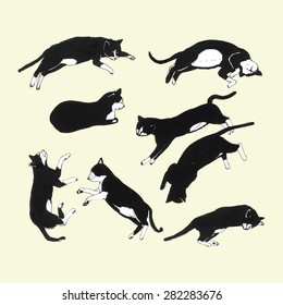 Hand drawn cats sleeping  in different poses. Vector illustration.