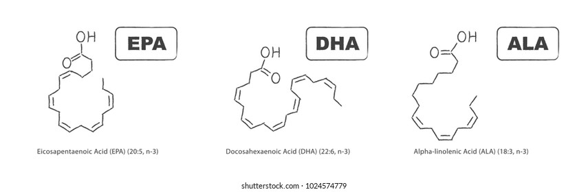 Hand drawn chemical structure of omega-3 fatty acids. Eicosapentaenoic Acid (EPA), Docosahexaenoic Acid (DHA) and Alpha-linolenic Acid (ALA).