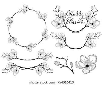 Hand Drawn Cherry Blossom Arrangements. Floral Decorative Design Elements. Dividers, Text Frames and Wreaths. Vector Illustration