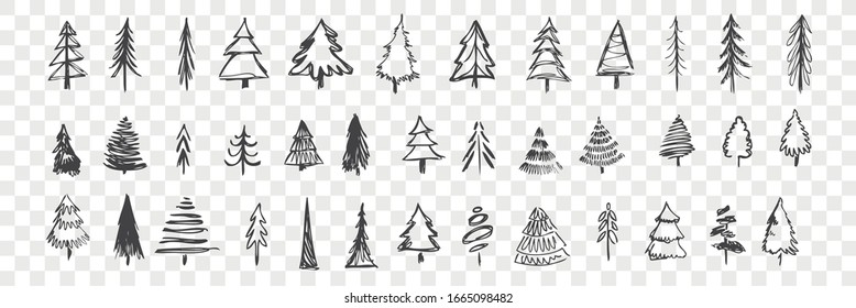 Hand drawn christmas trees set. Scribbles, doodles. Collection of pencil various scattered christmas trees. Sketches of different coniferous tree isolated on checkered background. New year symbol.