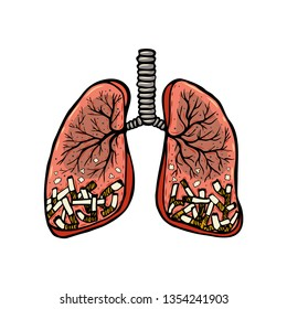 Hand drawn cigarettes in human lungs. Unhealthy habit smoking concept. Color sketched vector illustration
