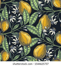 Hand drawn citrus fruits backdrop. Elegant lemons seamless pattern with citrus fruits, flowers, branches sketches. Perfect for packaging, fabric, wrapping paper. Watercolor style art. Lemons design