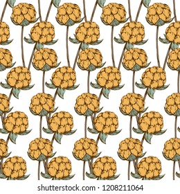 Hand drawn cloudberry seamless pattern vector template. Wild forest berries texture design. Illustration of sketched cloudberries