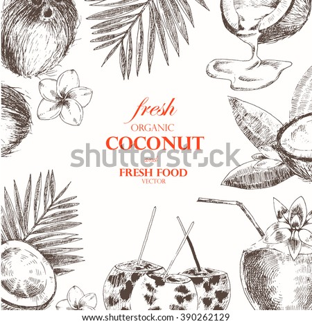 hand drawn coconut design template cocktail stock vector royalty